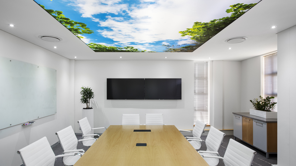 The boardroom of the future